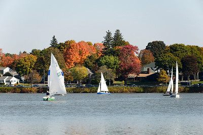 Flying Scott Regatta QYC 10-19-13
