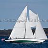 Fortune  312<br /> Sail For Pride