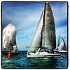 Live action from Div 1 line @keywest #sailing #keywest #qkeywest #kwrw #florida