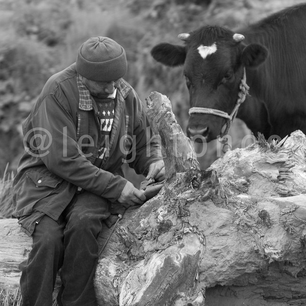 #Equator #quito #people #animals @natgeo #blackandwhite #bw #natgeo #nofilters #thephotosociety