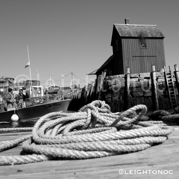 I need to do more B&W @rockportfest #rockport #modif1day #capeann @capeannchamber @todayoncapeann #blackandwhite #black&white