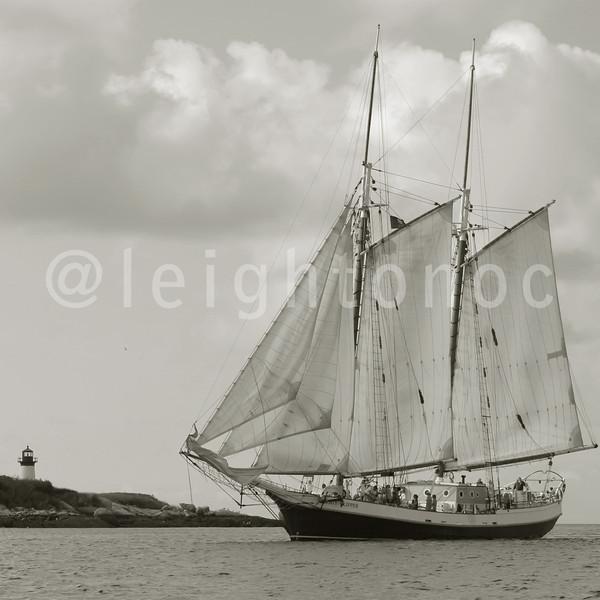 Liberty Clipper sailing by Ten Pound Island @glschoonerfest happening 8/30-9/1 @todayoncapeann @capeannchamber @dscvrglstr #gloucester #capeann #schooners #tallships #liberty #clipper #lighthouse