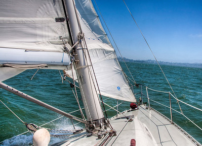 sailing-san-francisco