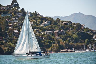 sailing-mt-tam-2