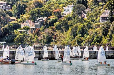 belvedere-cove-sailing