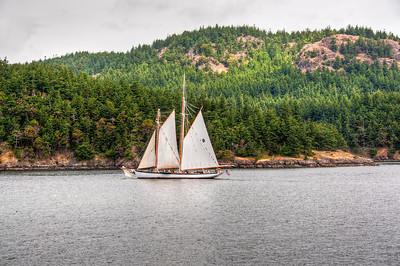 sailing-san-juan-islands-3