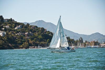 sailing-mt-tam