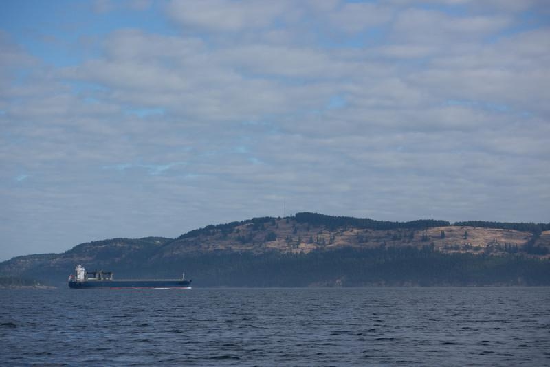 Cargo ship on the Strait of Georgia.  Keep away!