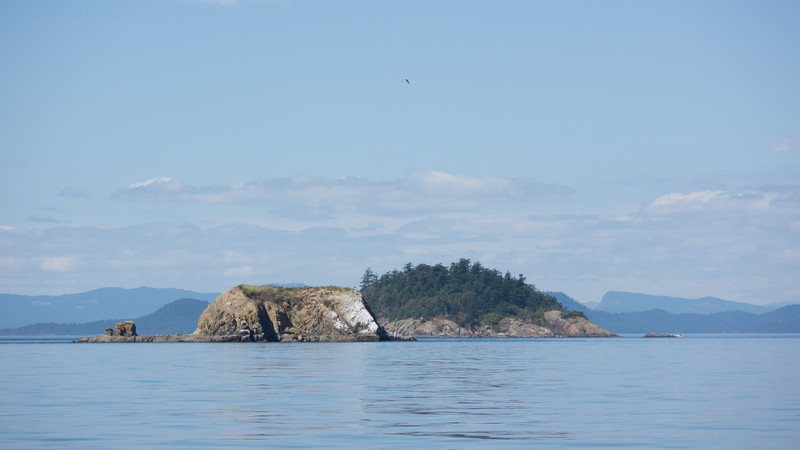 Bare Island in the foreground, Skipjack just behind it.