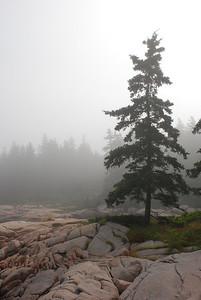 Granite and fog 2