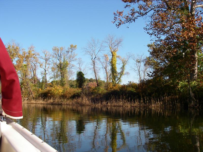 Selden Creek