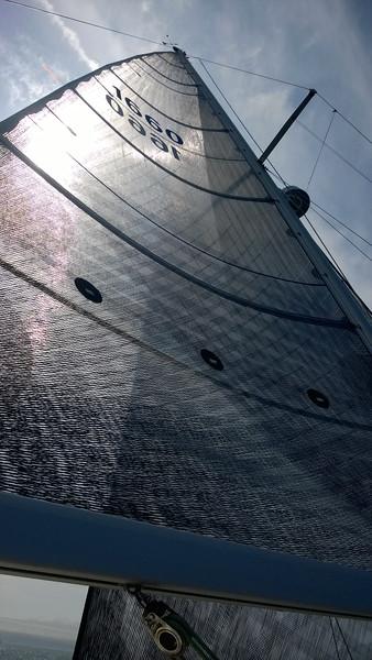 Mata Hari's new main sail is awesome.