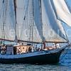 9-6-15-gloucester-schooner-race-leighton-0026