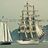 Opsail 2012 New York<br /> American 2.0<br /> Cisne Branco