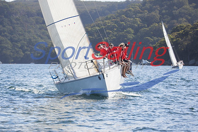 Young 88 NSW Championships
