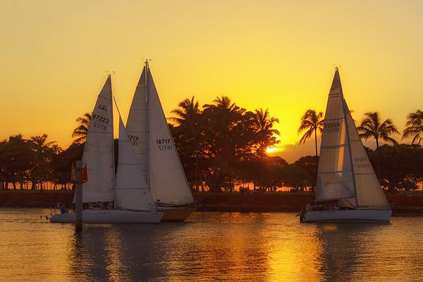 Golden Sunset Sail