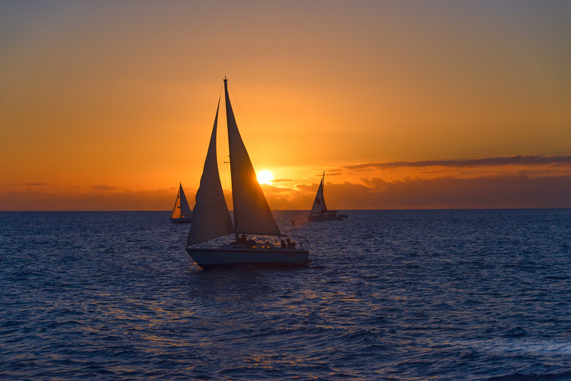 Blue and Gold Sailing
