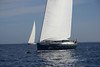Sailing yacht with dolphin