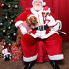 Santa Paws Photos-043