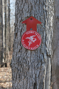 Cub Scout Camping 4-4-09 94