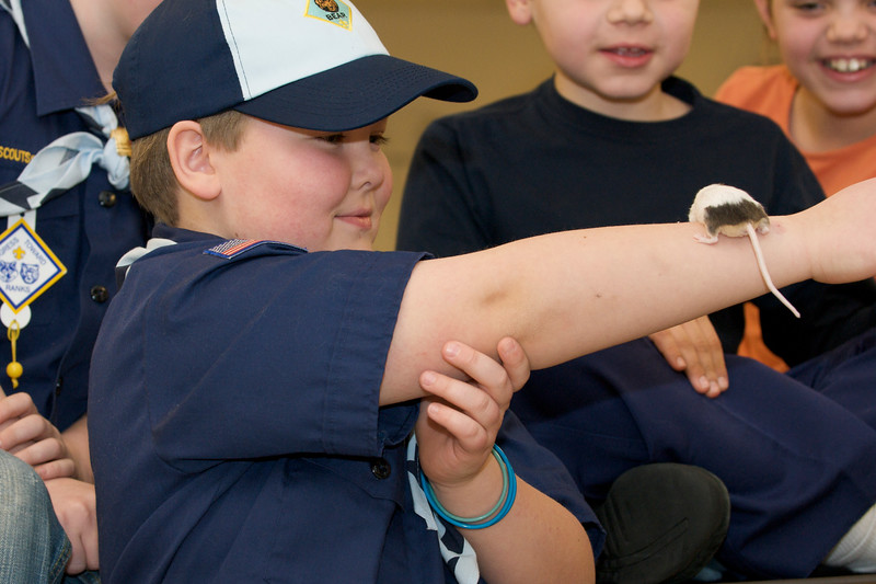 Cub Scouts Live Animals  2010-01-21  114.jpg