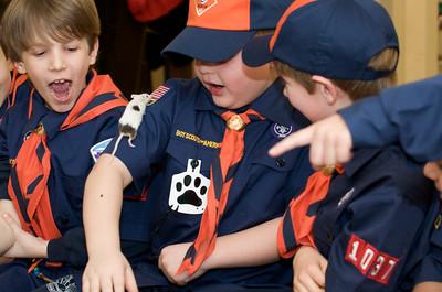 Cub Scouts Live Animals  2010-01-21  85