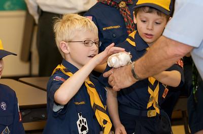 Cub Scouts Live Animals  2010-01-21  54