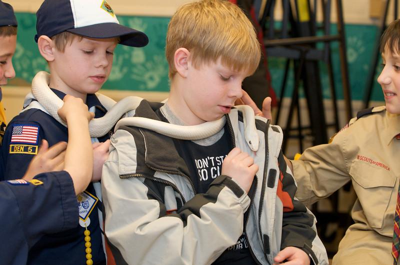 Cub Scouts Live Animals  2010-01-21  194.jpg