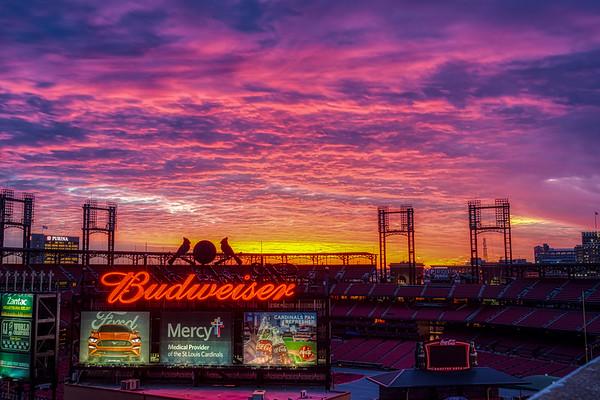 Busch Stadium III Neon