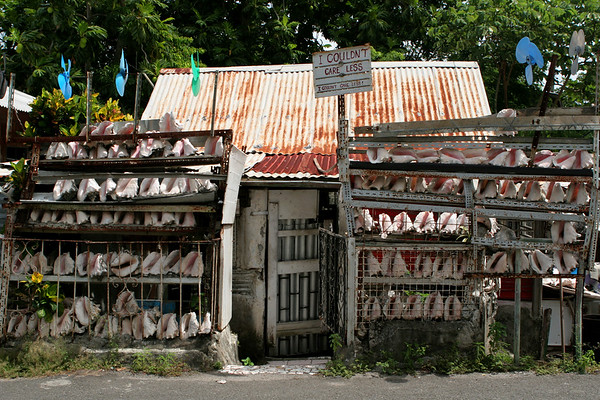 Vieux Fort, Saint Lucia, Windward Islands, Caribbean Sea