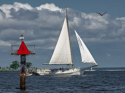Power of Sail