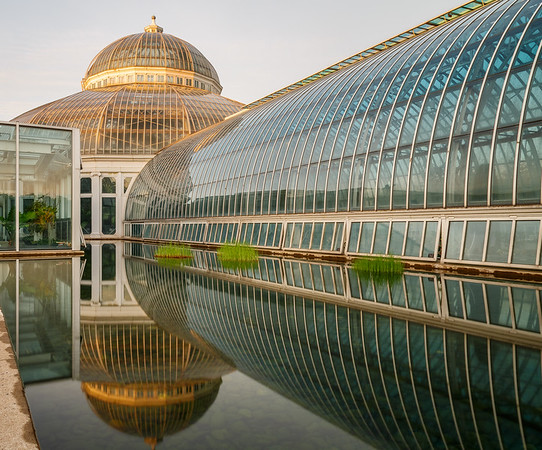 Golden Dome Reflected