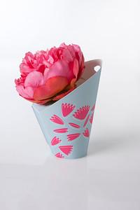 14-POL-Flower_Bulbs.jpg