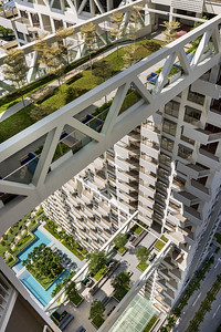 SkyHabitat_Landscape Bridge View Looking to Ground_image by Edward Hendricks