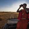 Spotter, Masai Mara