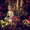 """""""Buddha Garden"""""""