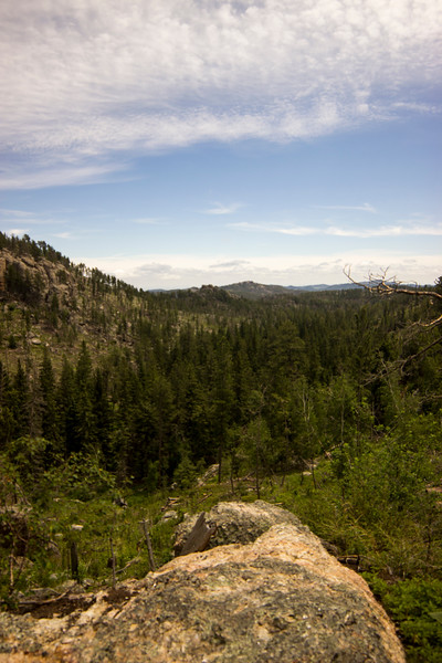 Overlooking Custer