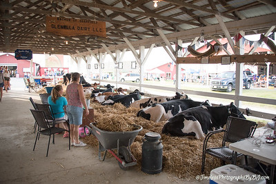 2017_Salem_County_Fair-64
