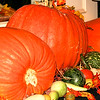 Pumpkins at the Hawthorne Hotel 2009