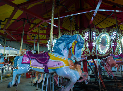 Carousel Horse in the night