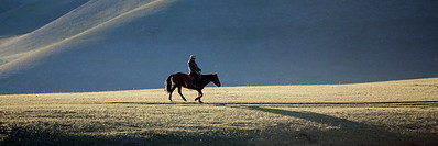 Man and horse in Mongolian landscape