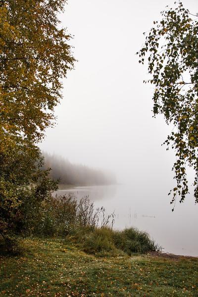 Luonto, Landscape