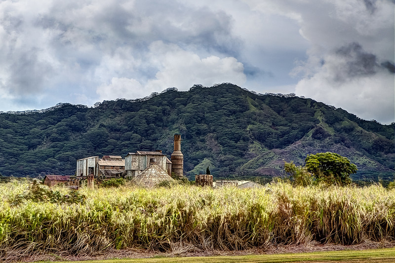 Poipu Sugar Cane Mill