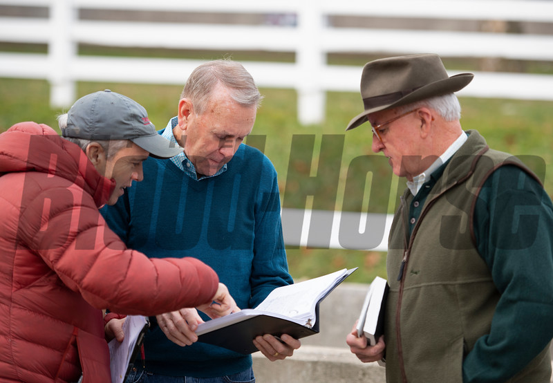 (L-R): Mark Taylor, John Henderson, Ryan Mahan, discussing pedigree updates at Taylor Made Sales consignment. Scenes during the Keeneland January sales on Jan. 11, 2020 Keeneland in Lexington, KY. Photo: Anne M. Eberhardt