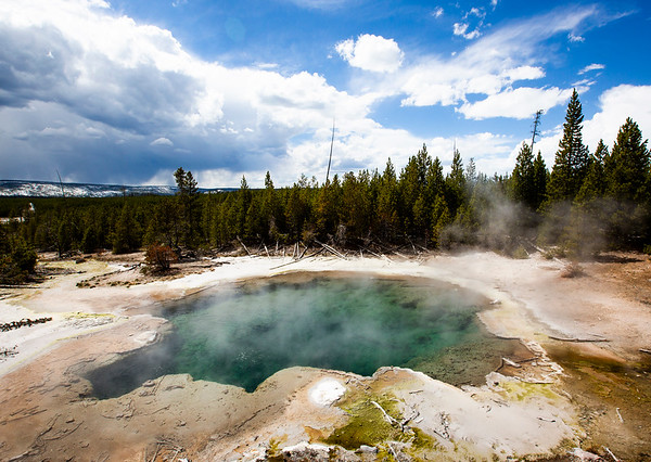 Yellowstone Springs