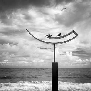 "Inspired by the movements of the dolphins, this piece is part of a collection of sculptures titled ""Cardúmen Onírico"" by Carlos Guzmán. The sculptures are installed in the Plaza del Ancla Condado in Puerto Rico. I was struck by the shape against the clouds from a passing rain."