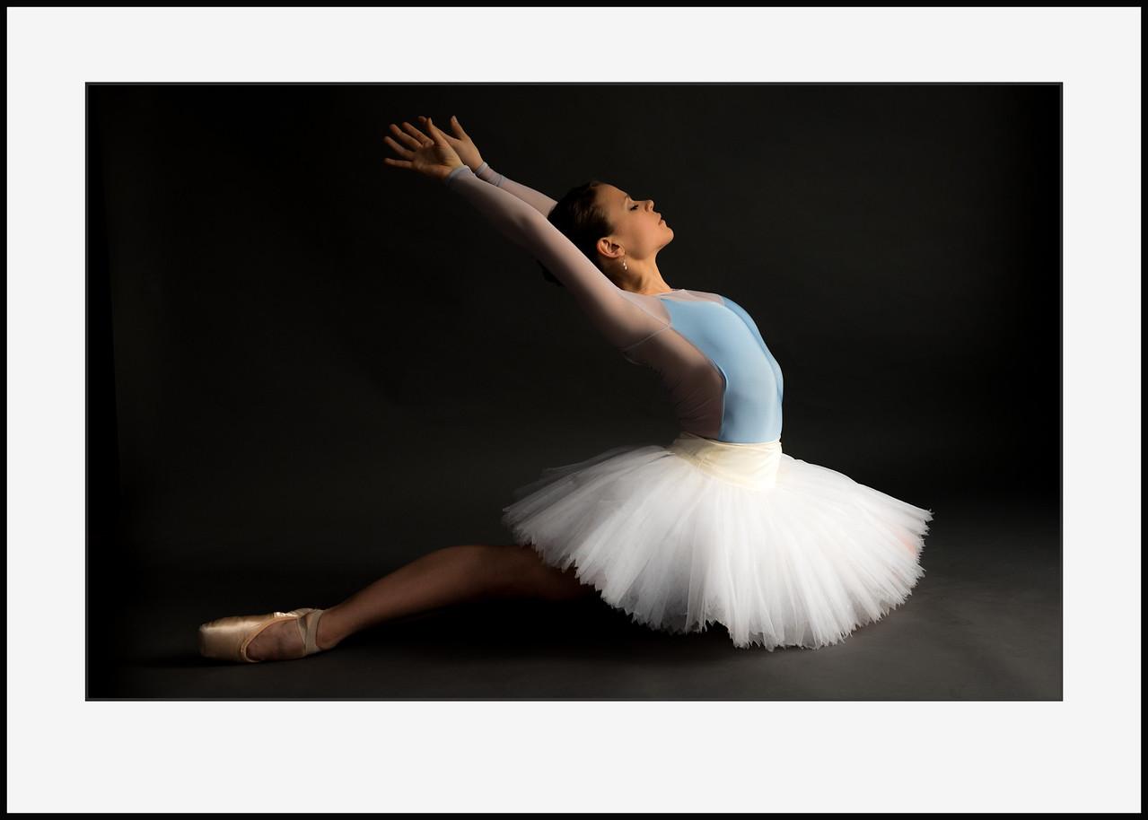 Swan #2 70x50 cm. Pris incl. ramme  2.700 kr - pris for print alene 1.800 kr
