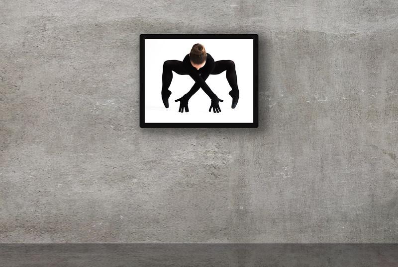 Spider. 70x50 cm i sort håndlavet træramme. Trykt på GF papir. Pris incl. ramme 1.900,00 kr
