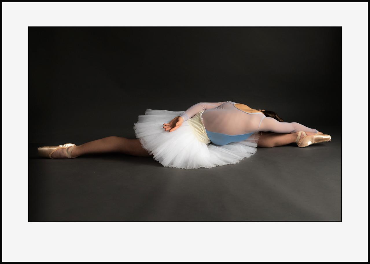 Swan #1 70x50 cm. Pris incl. ramme  2.700 kr - pris for print alene 1.800 kr