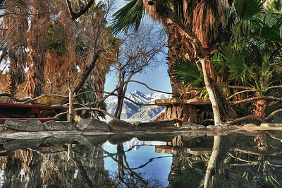 Crystal Pool Reflections, Lower Warm Springs, Saline Valley